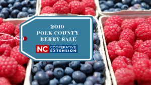 2019 Polk County Cooperative Extension Berry Sale