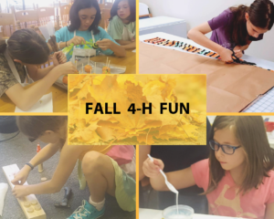 Fall 4-H Fun logo image