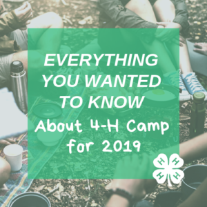 Cover photo for Attention Polk County 4-Hers: Everything You Need to Know About Summer Camp