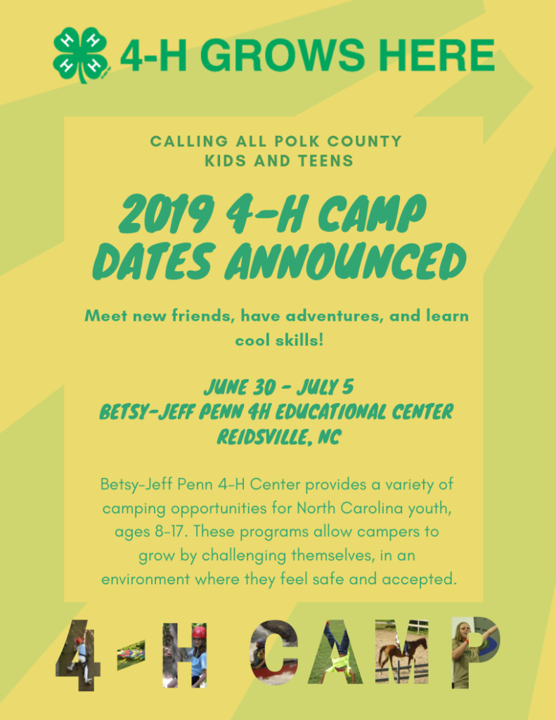 4-H Summer Camp Info - page one