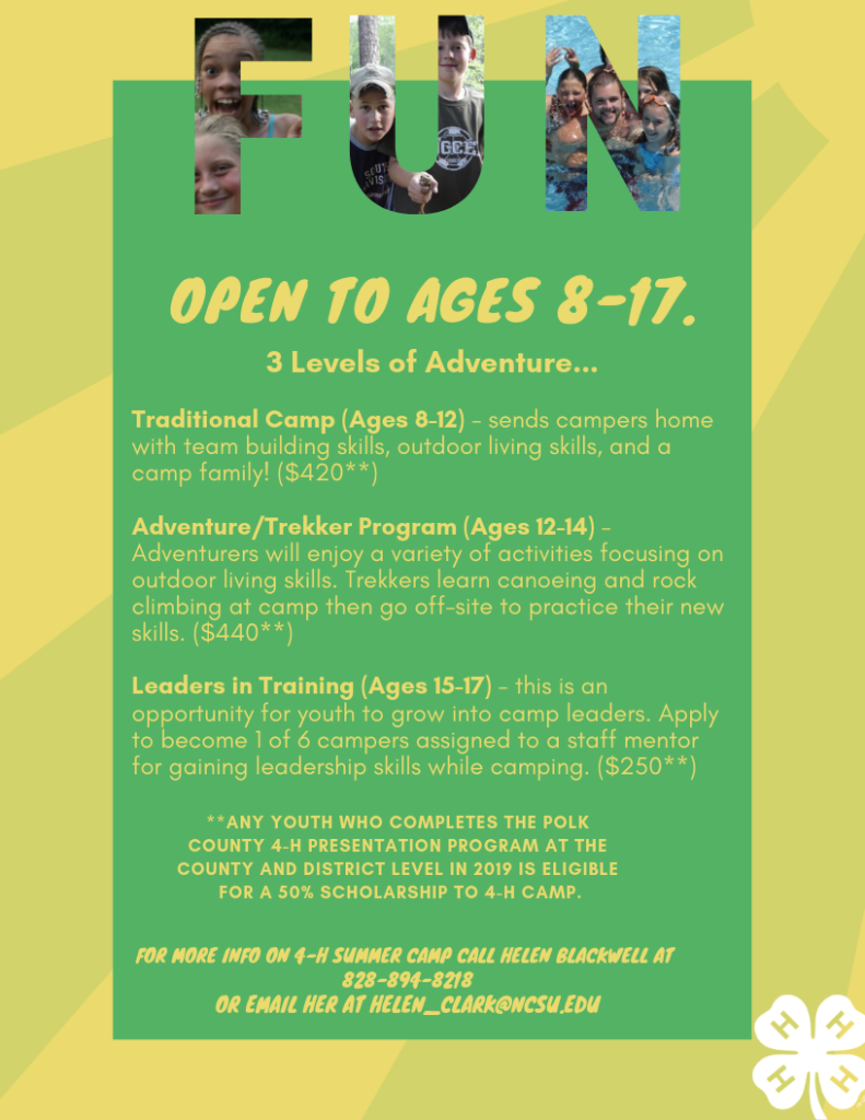 4-H summer camp info - page two