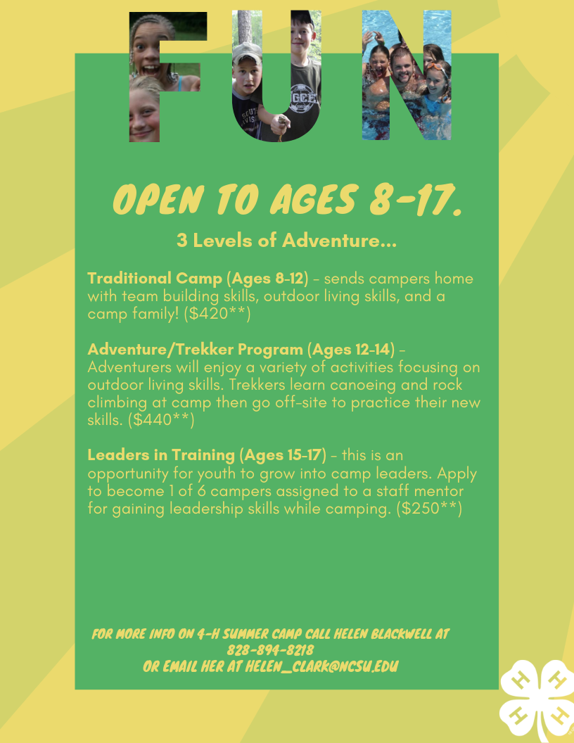 Attention Polk County 4-Hers: Everything You Need to Know About