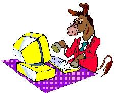Cover photo for N.C. 4-H Horse Program Digital Survey Results