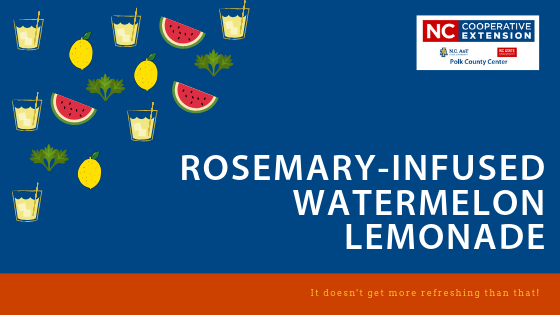 Rosemary-Infused Watermelon Lemonade banner image