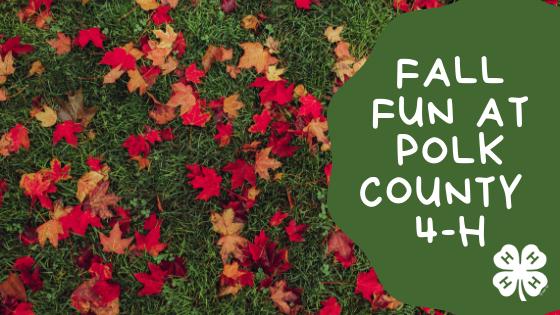 Polk County 4-H Fall Registration