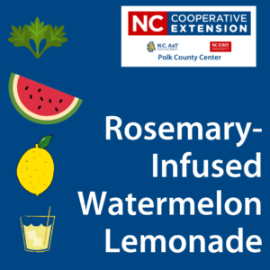 Cover photo for Rosemary-Infused Watermelon Lemonade
