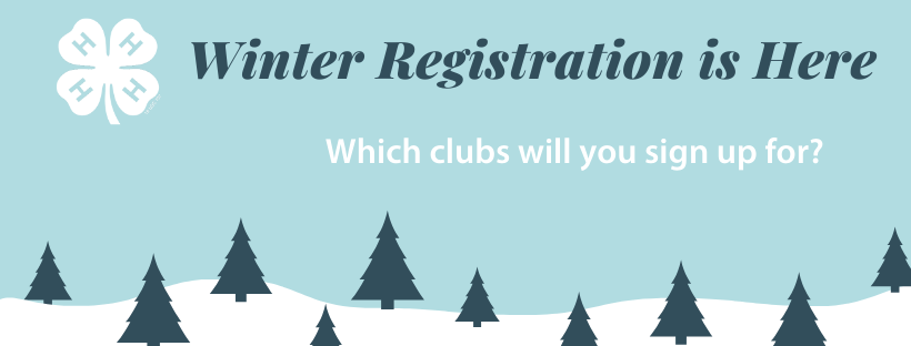 4-H Winter Registration 2020 Polk County