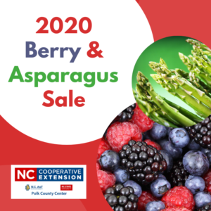 Cover photo for 2020 Berry & Asparagus Sale Is Here!