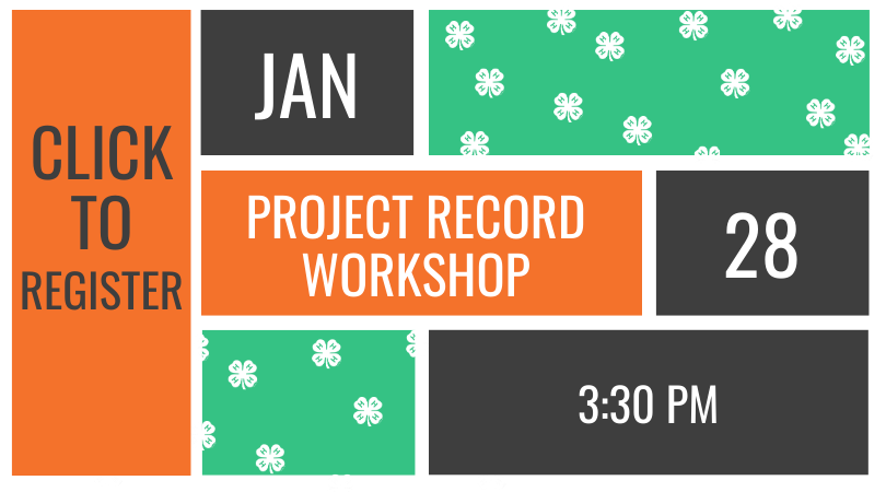 Project Record Workshop Reminder