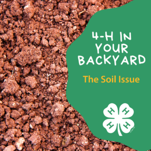 Cover photo for 4-H in Your Polk County Backyard: The Soil Issue