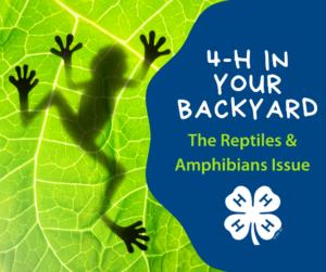 4-H Reptiles & Amphibians Activities