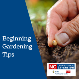 Cover photo for Beginning Gardening Tips for Polk County Gardeners