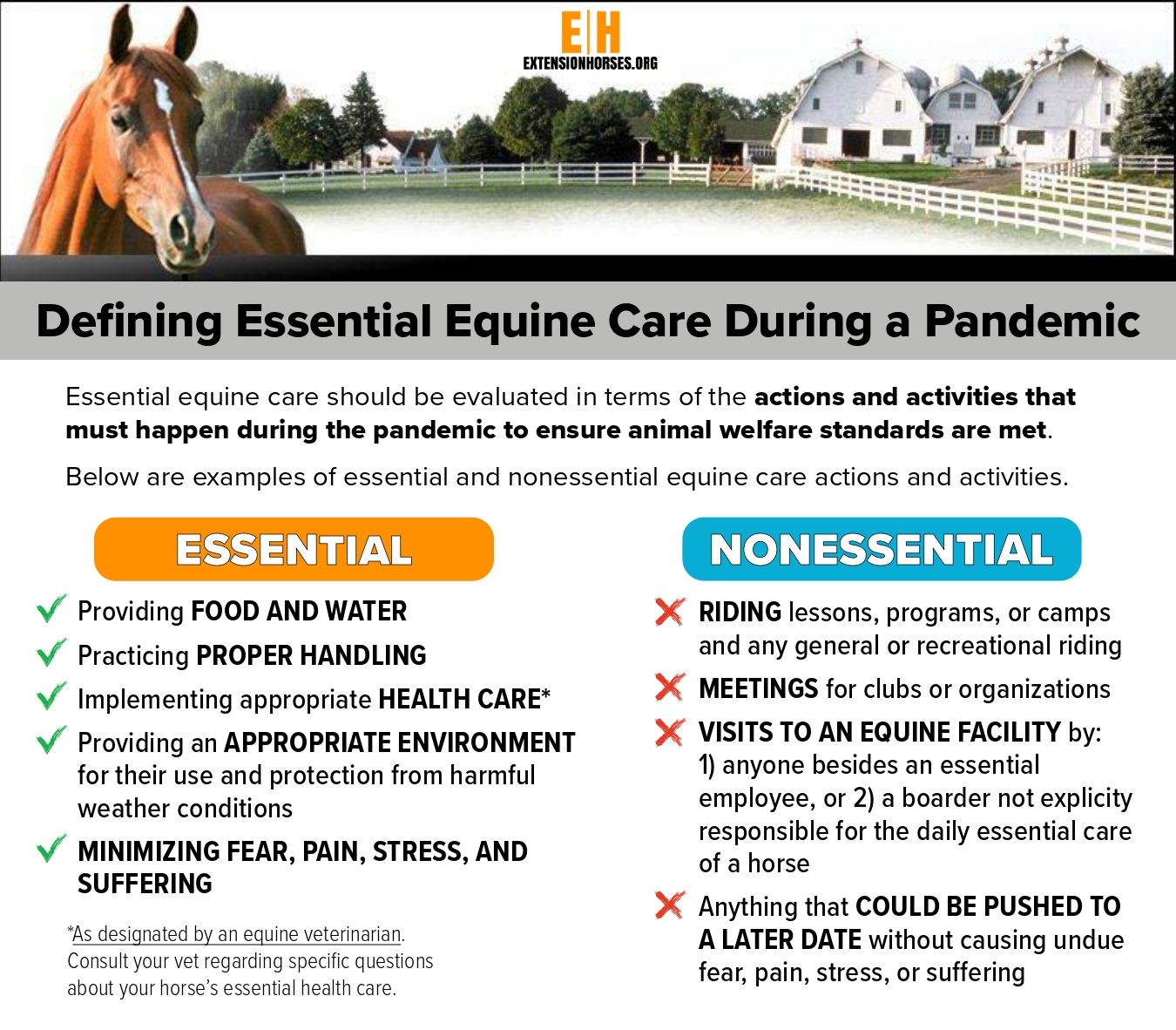 COVID-19 Infographic on Essential and Nonessential Equine Care