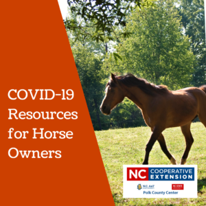COVID-19 Resources for Horse Owners - Featured