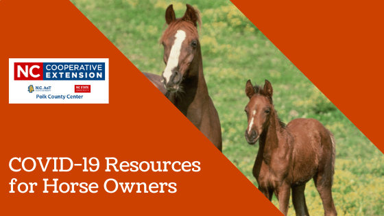 COVID-19 Resources for Horse Owners