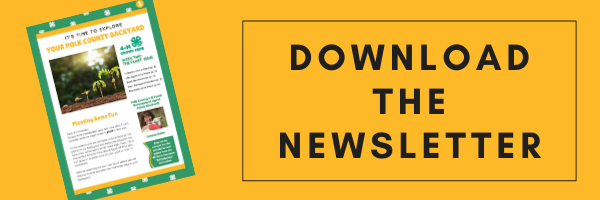 Download the Newsletter