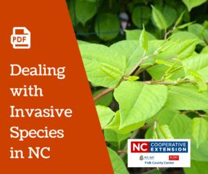 How to handle nc invasive plants