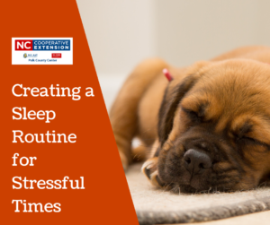 Cover photo for Healthy Habits: Creating a Sleep Routine for Stressful Times