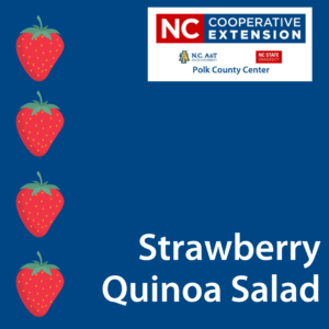 Strawberry Quinoa Salad Recipe