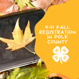 Cover photo for Fall 2020 Program Registration - Polk County 4-H