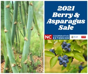 Polk County NC 2021 Berry & Asparagus Sale