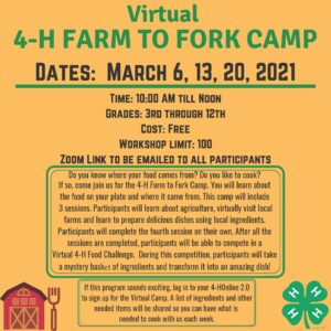 Cover photo for 4-H Farm to Fork Camp