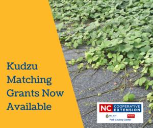 Kudzu Matching Grants in Polk County NC