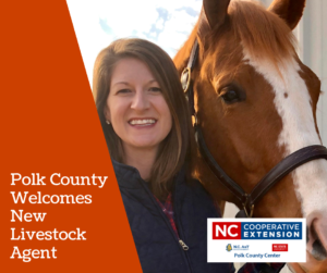 Polk County NC Livestock Agent