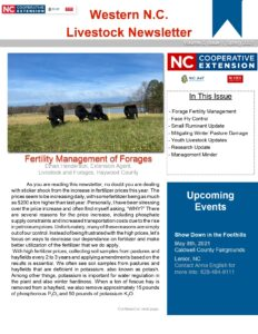 WNC Newsletter Spring 2021